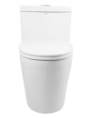 挂墙式明杆带出水头淋浴花洒+300坑距座厕